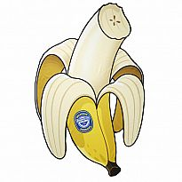 Beach Blanket Banana