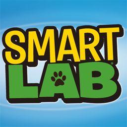 SmartLab Toys
